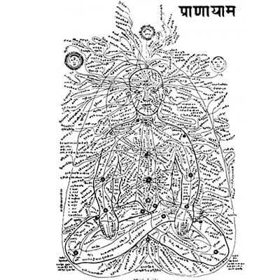 В Шивасамхите (рядом с Хатха Йога Прадипикой, одним из основных сценариев Хатха Йоги) произносится 350 000 нади