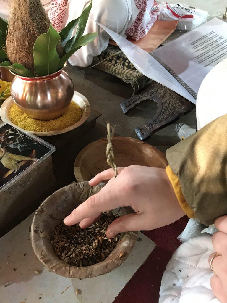Le proprietà dell'erba kusha nella cultura e nell'Astrologia Vedica