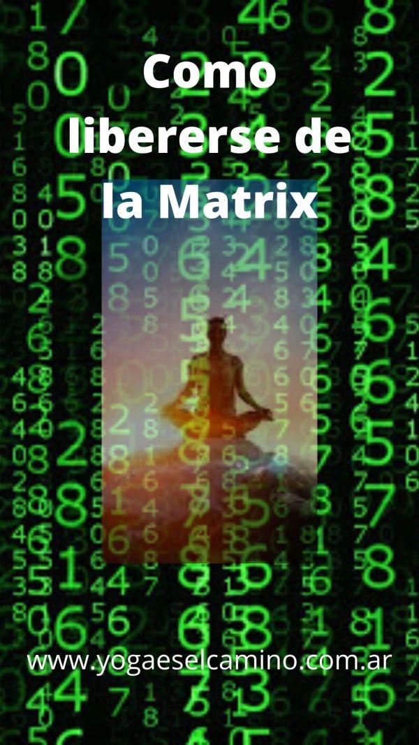 Como liberarse de la Matrix