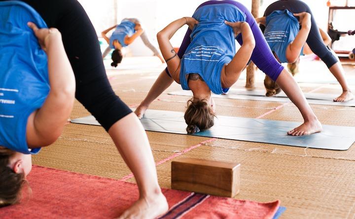 500 Hour Yoga Teacher Training Pose