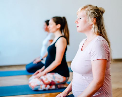 Yoga Therapy Course