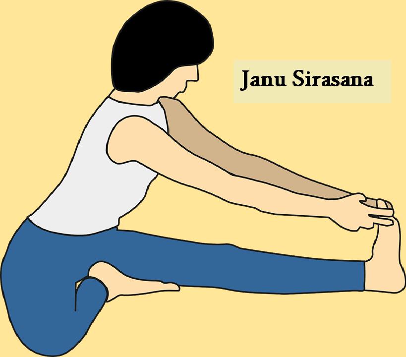 Janu sirasana for Muladhara Chakra