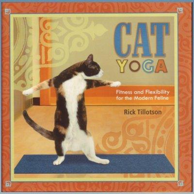 Cat Yoga: Fitness and Flexibility for the Modern Feline – Rick Tillotson