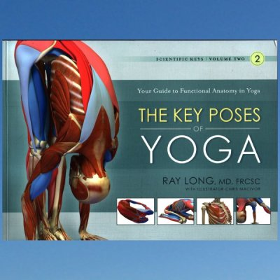 The key poses of  yoga  – Ray Long