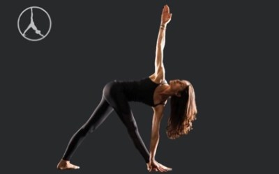 Deep standing and seated twists (Level 2)