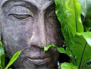 Gedulg und Achtsamkeit Yogannetteblog