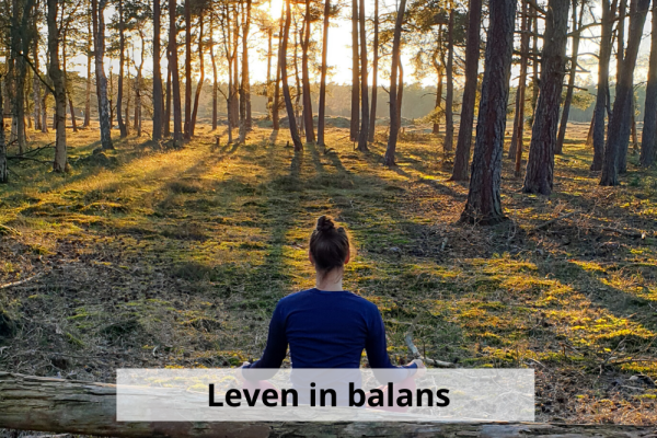 Product leven in balans
