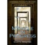 Miracle In Progress - Mrotek