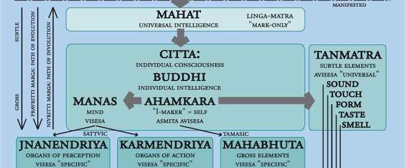 Samkhya Cosmogeny in Asana