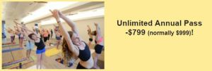 Unlimited Annual Pass $799 (normally $999)