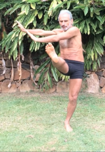 Active spinal rotation (twisting), with resistance against one lower limb, by Simon Borg-Olivier