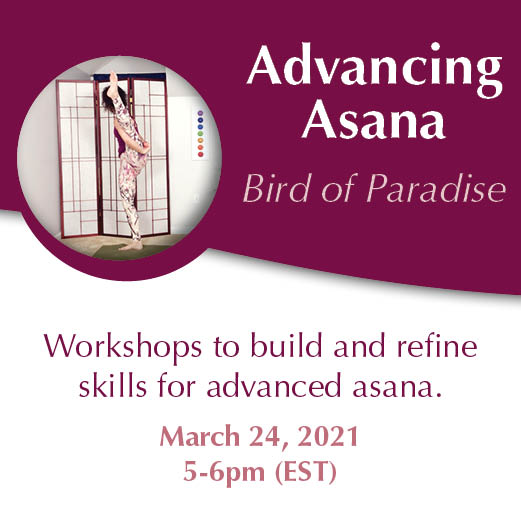Advancing Asana Workshop Series March 24 Bird of Paradise with Yoga and Wellness with Angelina Fox. ERYT500, YACEP Yoga Teacher and Ayurveda Health Counselor