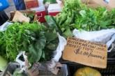 Assorted greens, potato tops