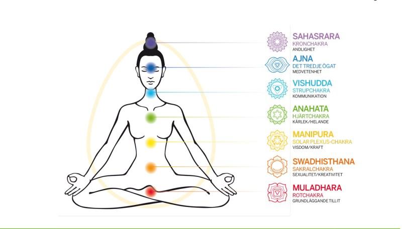 CHAKRAGUIDEN: Vilka chakran finns det? | Yoga World