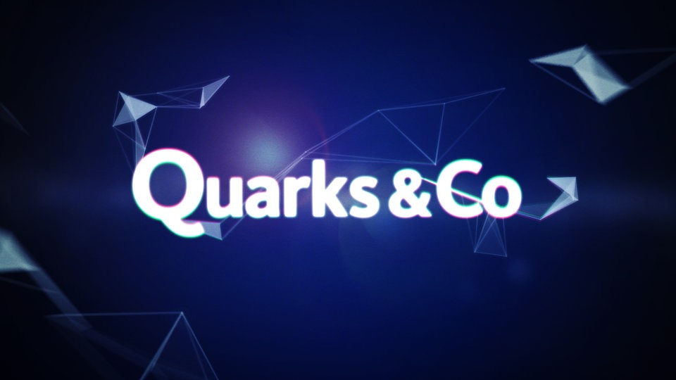 Facebook Feed Quarks&Co