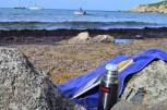 BeachBBQ w Maya_704