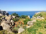 Bondi Cliffs