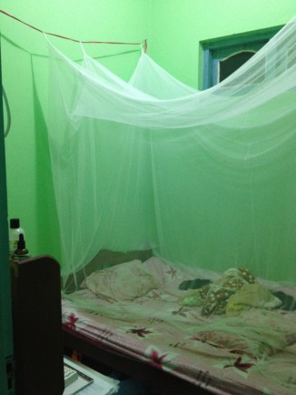 My bedroom and my mosquito net.