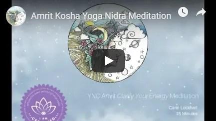 Amrit Kosha Yoga Nidra Meditation image