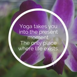 yogtemple yoga quotes 89 - Yoga Zitate