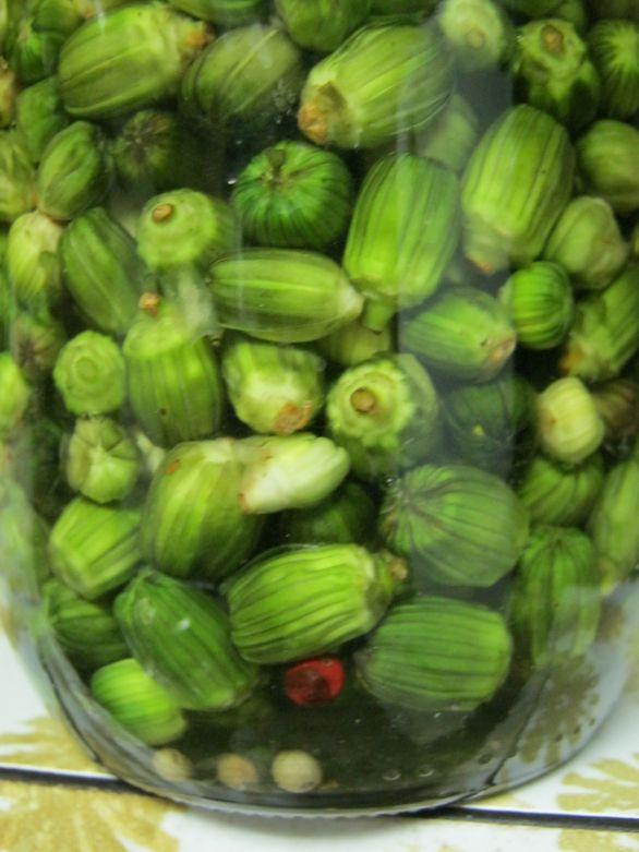 Jar of dandelion capers