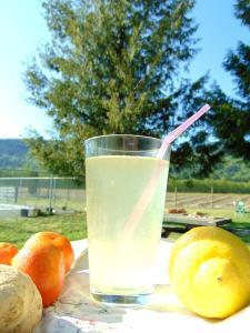 mandarin lemon lavender rosemary water kefir
