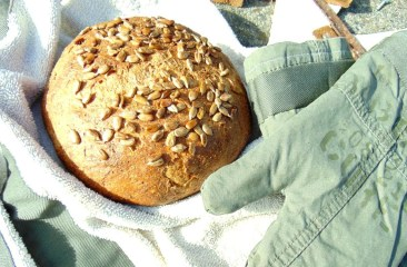 sunflower seed carrot bread