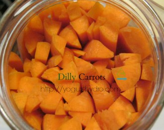 Learn to make fermented probiotic rich dilly carrots without whey. Great in salads, & with meals, if you resist eating them all straight from the jar first.