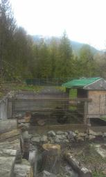 chicken coop and run