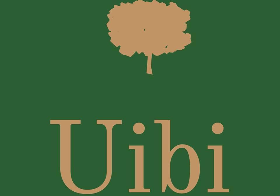 Uibi Hub