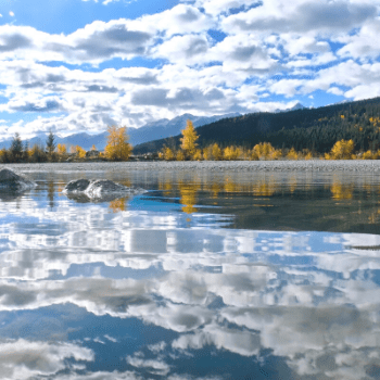 scenic view of the kicking horse river in autumn