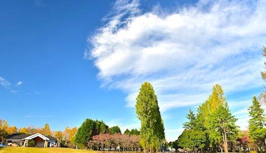 彩の森公園