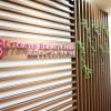 女性の薄毛・発毛専門治療「東京ビューティクリニック」体験レポート