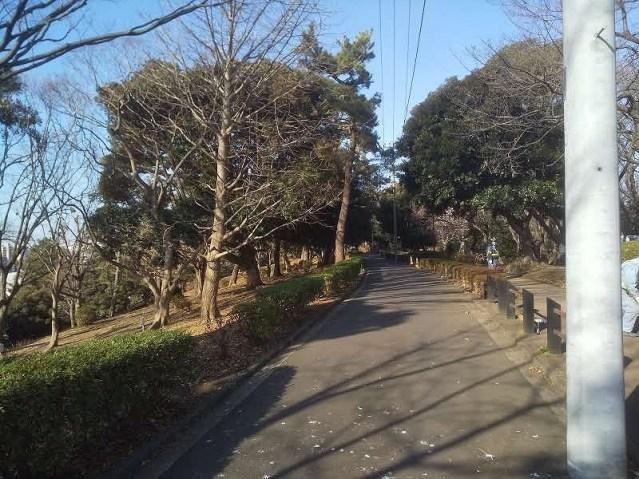 神の木公園北側通路