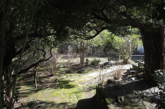 円応寺境内