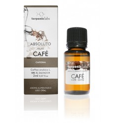 cafe-absoluto