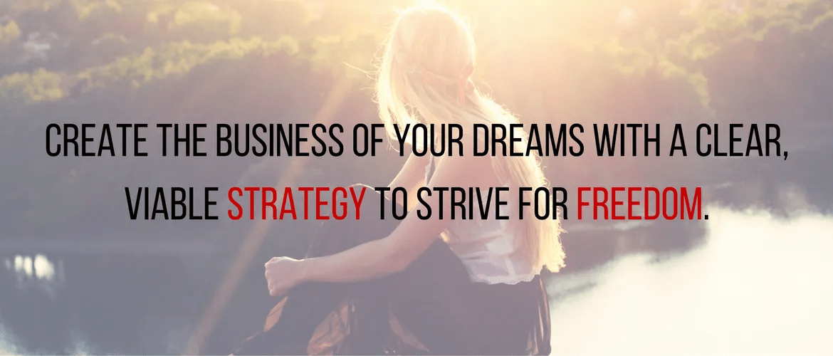 Create the business of your dreams with a clear, viable strategy to strive for freedom.