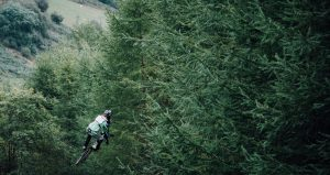 Mountainbike Downhill-Sprung im Wald