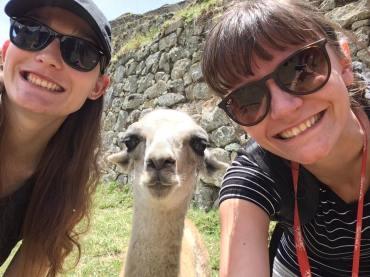 us-with-a-llama