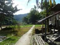 07-Langsat River Walk (800x600)