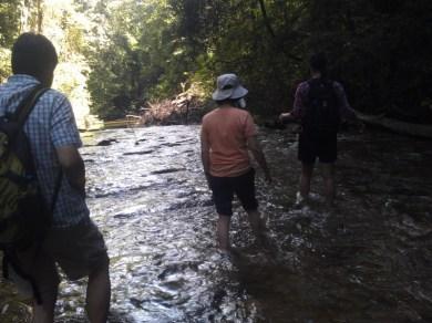 23-Langsat River Walk (800x600)