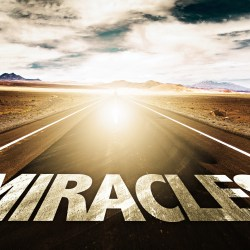 Does Your Recruiting Need a Miracle Worker?