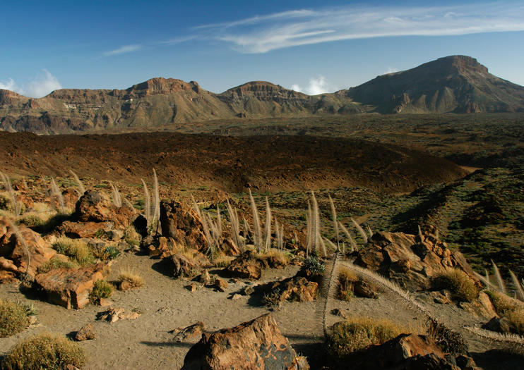 Top 8 must-see Tenerife attractions