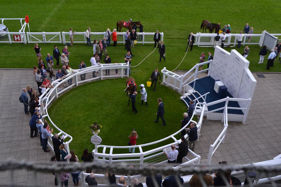 Epsom Downs Racecourse Parade Ring
