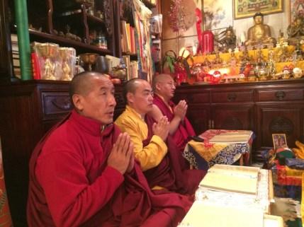 Lamas Praying