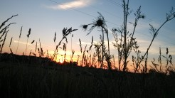 美国中西部的日落