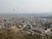Pájaros de mal agüero sobrevolando Katmandú