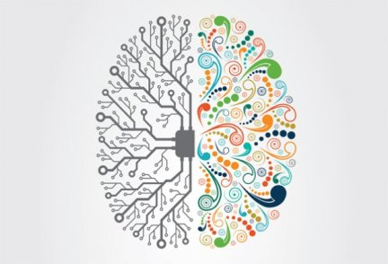 brain-article-image