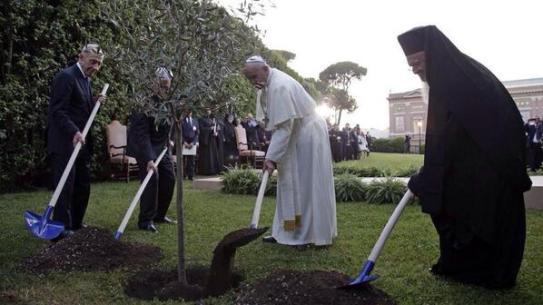 Francisco, Bartolomé I, Peres y Abbas plantan árbol por la paz