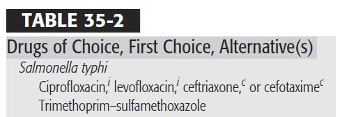 resistensi kloramfenikol